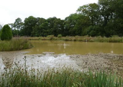Lake (2)