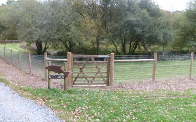 Our Fantastic Otter Fencing
